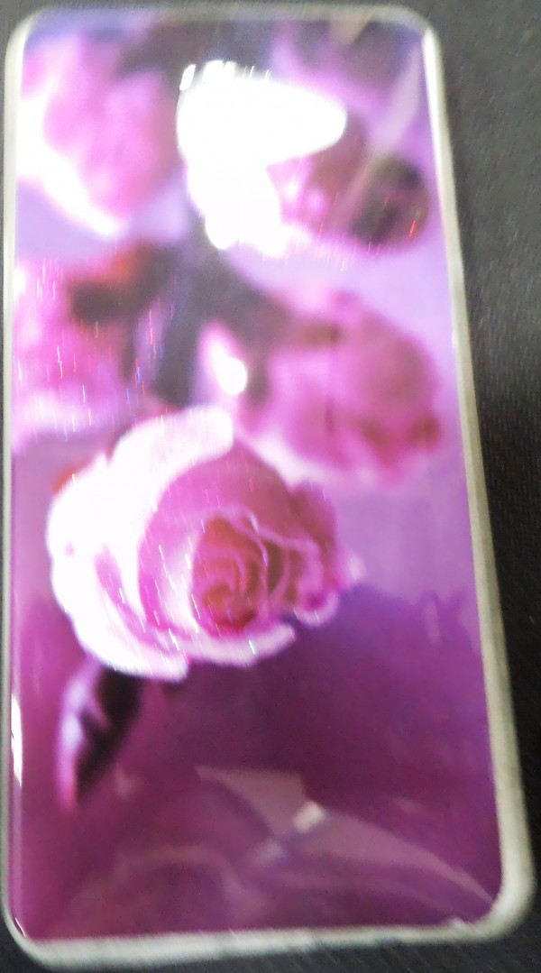 SAMSUNG A510 BACK COVER (Red Rose)
