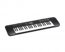 Casio CTK-245 49 Keys Electronic Keyboard(Black)